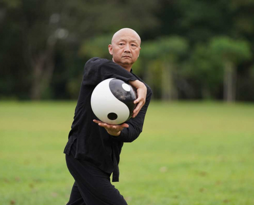 Kungfu Republic p28-Tai-chi-Ball-495x400 Home