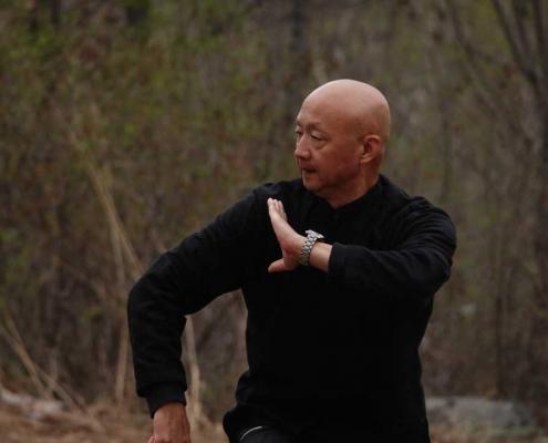 Kungfu Republic p8-Shaolin-Kung-fu-495x400 Home