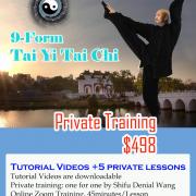 Kungfu Republic 9-Form-Tai-Yi-Tai-Chi-Course-180x180 Praying Mantis Kung Fu