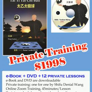 Tai Yi Tai Chi Ball Training Course
